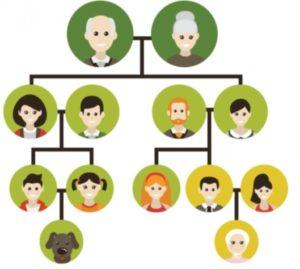 Family Tree News