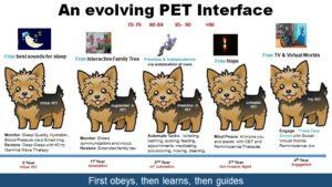 An evolving AI PET