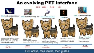 Evolving PET
