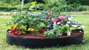 Granny Garden Plot