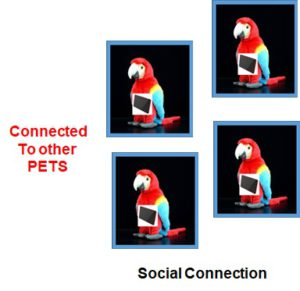 Interconnected PETs